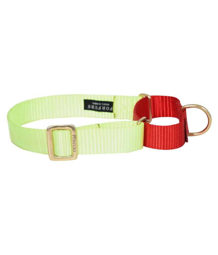 FORFURS Martingale Collar with Brass Fittings (S, Lime Green x Tomato Red)