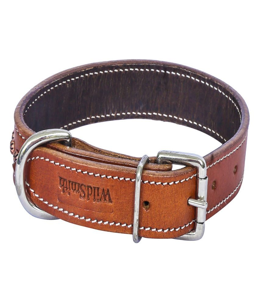 Wild Smith Geniune Leather Dog Collar With Lead(Leash) Reinforced With Nylon Tape