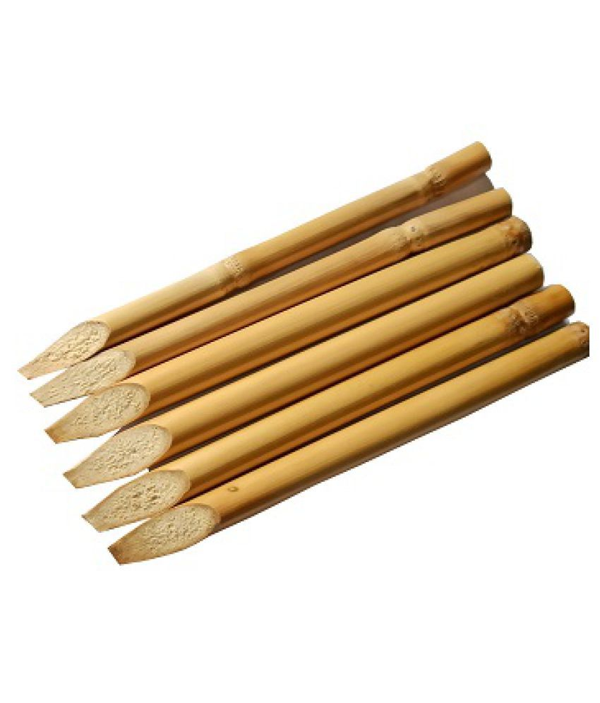 ASAD Wooden Calligraphy Pen (Pack of 6)