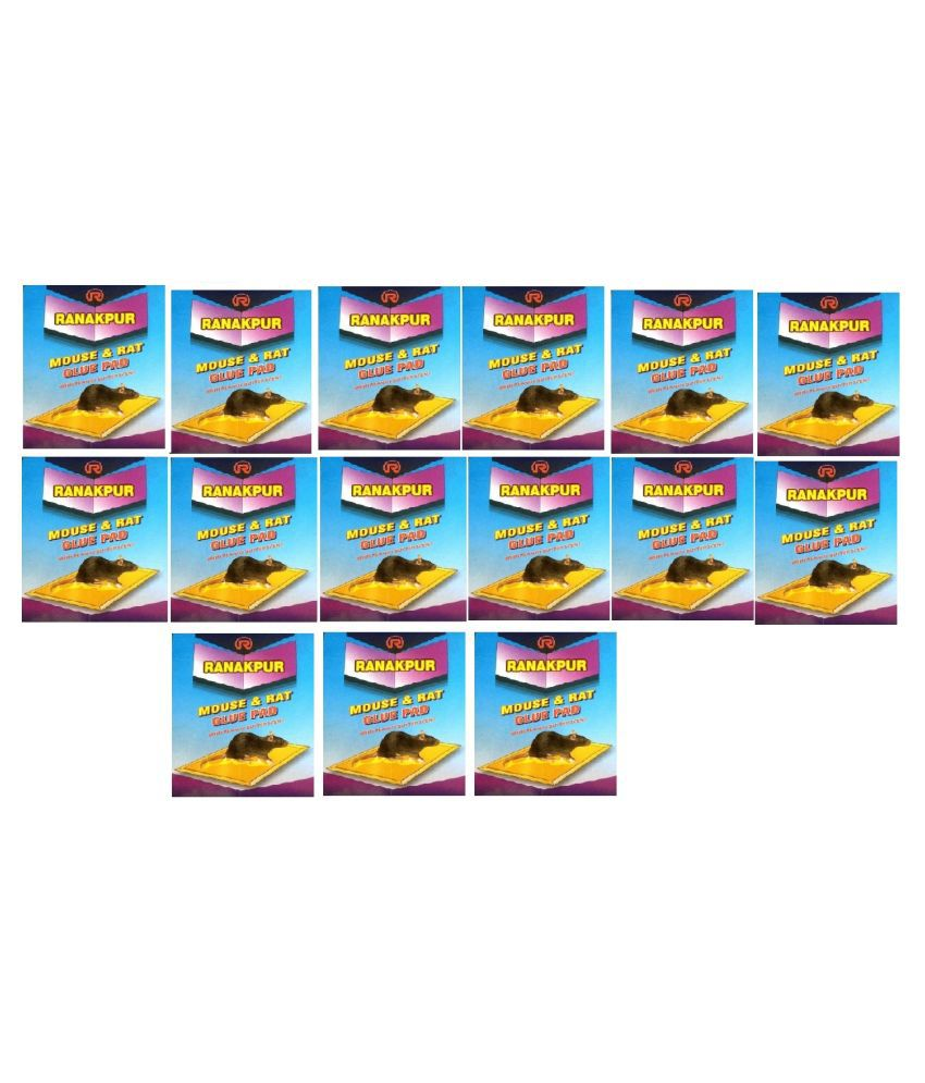 Ranakpur Mouse & Rat Trap with Peanut Butter Scent (Rat Catcher without Position) (34x12 Cm), Pack of 15