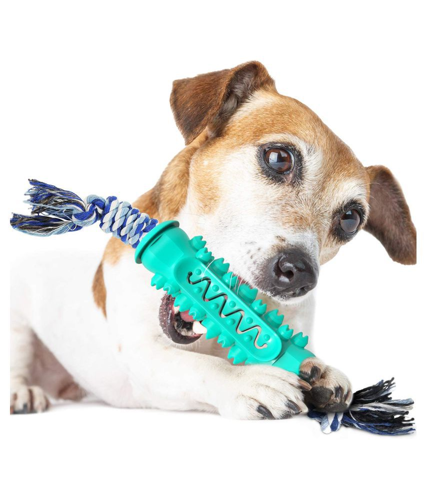 Emily Pets Dog Chew Toy For Aggressive Chewers, Dog Toothbrush Chew Toy Stick Non-Toxic Rubber Dog Toy For 15-30 Lbs Small Medium Large Dogs